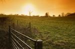 Winter Fields II by Richard Osbourne