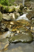Yorkshire Dales - Stream by Richard Osbourne