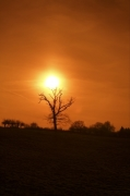 Winter Sunset by Richard Osbourne