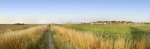 Cley Marshes - Norfolk