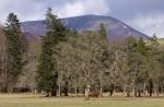 Beinn a' Ghlo - Scotland