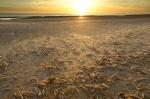 Norfolk Dawn II by Richard Osbourne