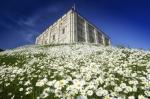Norwich Castle by Richard Osbourne