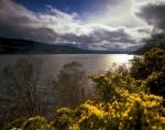 Loch Ness, Scotland by Richard Osbourne
