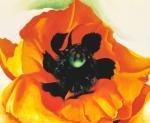 Poppy 1927