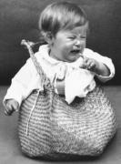In the Bag by Babies Collection