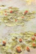 Red Waterlilies by Claude Monet