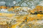 Landscape in St. Remy by Vincent Van Gogh