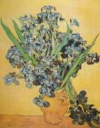 Still Life of Irises