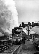 No 34052, Lord Dowding class locomotive by Mirrorpix