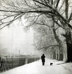 Man walking his dog in the snow by Mirrorpix