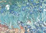 Irises in Garden by Vincent Van Gogh