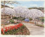The Eden Project by Glyn Martin