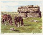 Combestone Tor by Glyn Martin