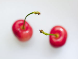 Two Cherries by Assaf Frank