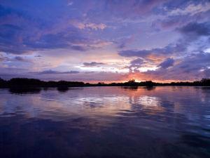 Mongrove River Sunset by Assaf Frank
