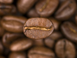 Coffee Bean by Assaf Frank