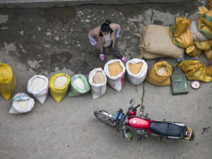 Guangxi Province, China, Elevated view of woman selling wheat in market by Assaf Frank
