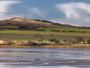 Low Tide, Budle Bay, Northumberland Coast by Assaf Frank