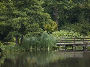 UK, Bridge over lake in garden by Assaf Frank