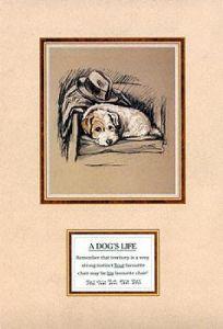 Dog's Life I by Mac Lucy Dawson
