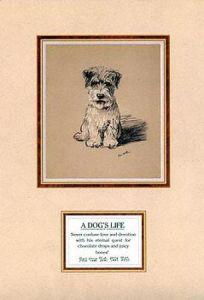 Dog's Life III by Mac Lucy Dawson