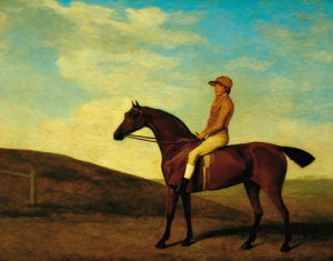 Rosaletta by George Stubbs