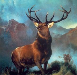 Monarch of the Glen by Sir Edwin Henry Landseer