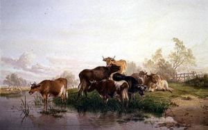 Cows in the Watermeadows by Thomas Cooper