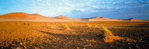 Namibia Stones by Chris Simpson