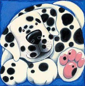 Spotty by Kate Mawdsley