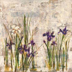 Iris Mist II by Dennis Carney