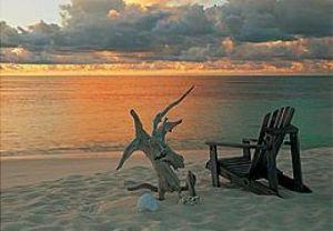 Tropical Sundowner by Chris Simpson