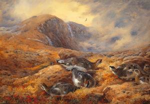 Danger Aloft by Archibald Thorburn