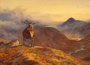 Voices of the Forest by Archibald Thorburn