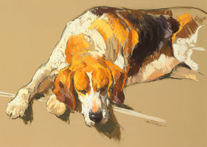 Hound in a Kennel by Andre Pater
