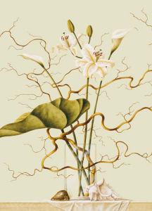 Lilies and willow by Ruud Verkerk