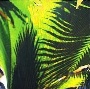 Palm Shadows I by Chris Simpson