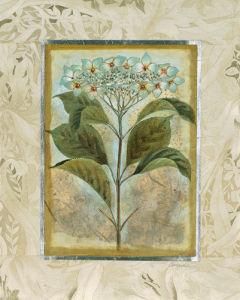 Du Jardin II by Joseph Augustine Grassia