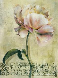 Floral Blush II by Dennis Carney