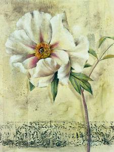 Floral Blush III by Dennis Carney