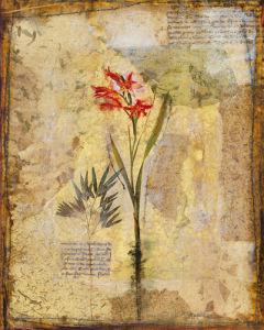 Dans les jardine I by John Douglas