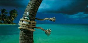 Island Breeze by Chris Simpson