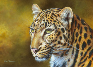 Leopard by Kim Thompson