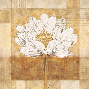 Bianco II by Linda Wood