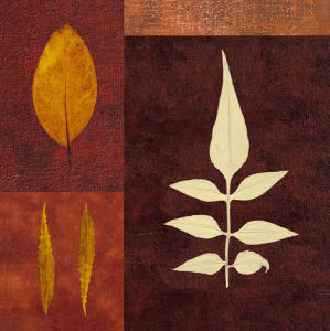 Amber Leaves II by Max Carter