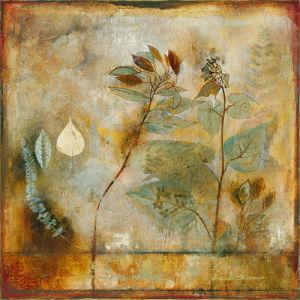 Autumn Elegance II by John Douglas