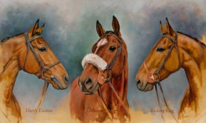 The Three Winter Kings by Sarah Aspinall