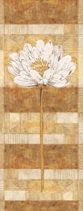 Flora Blanca II by Linda Wood