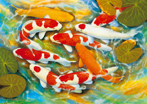 Koi - Carp by B. Lee